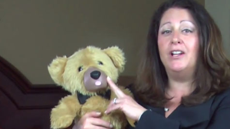 Screenshot from the now-defunct Teddy Love crowdfunding video