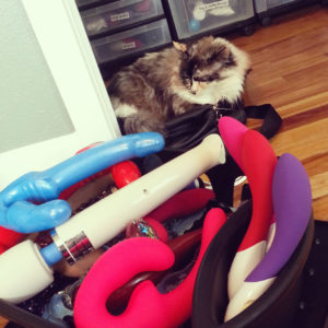 """Tessa and dish rack of """"toys"""""""